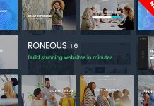 Roneous is a Creative Multi-Purpose WordPress Theme