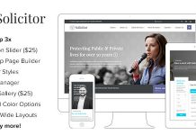 Solicitor is a functional WordPress theme