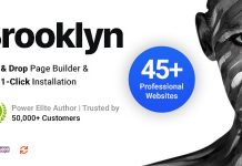 Brooklyn is a popular WordPress theme